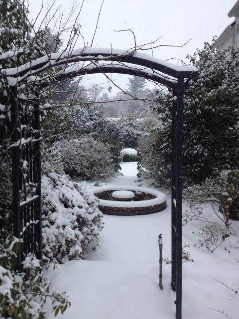 L&S Snow 1