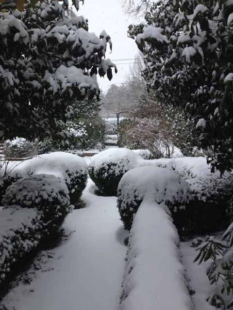 L&S Snow 4