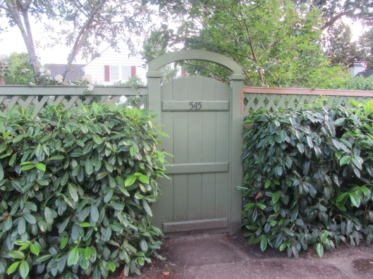 hedge 3