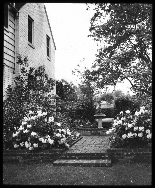 Knight Library Home Garden Ev Garden, Lantern Slide